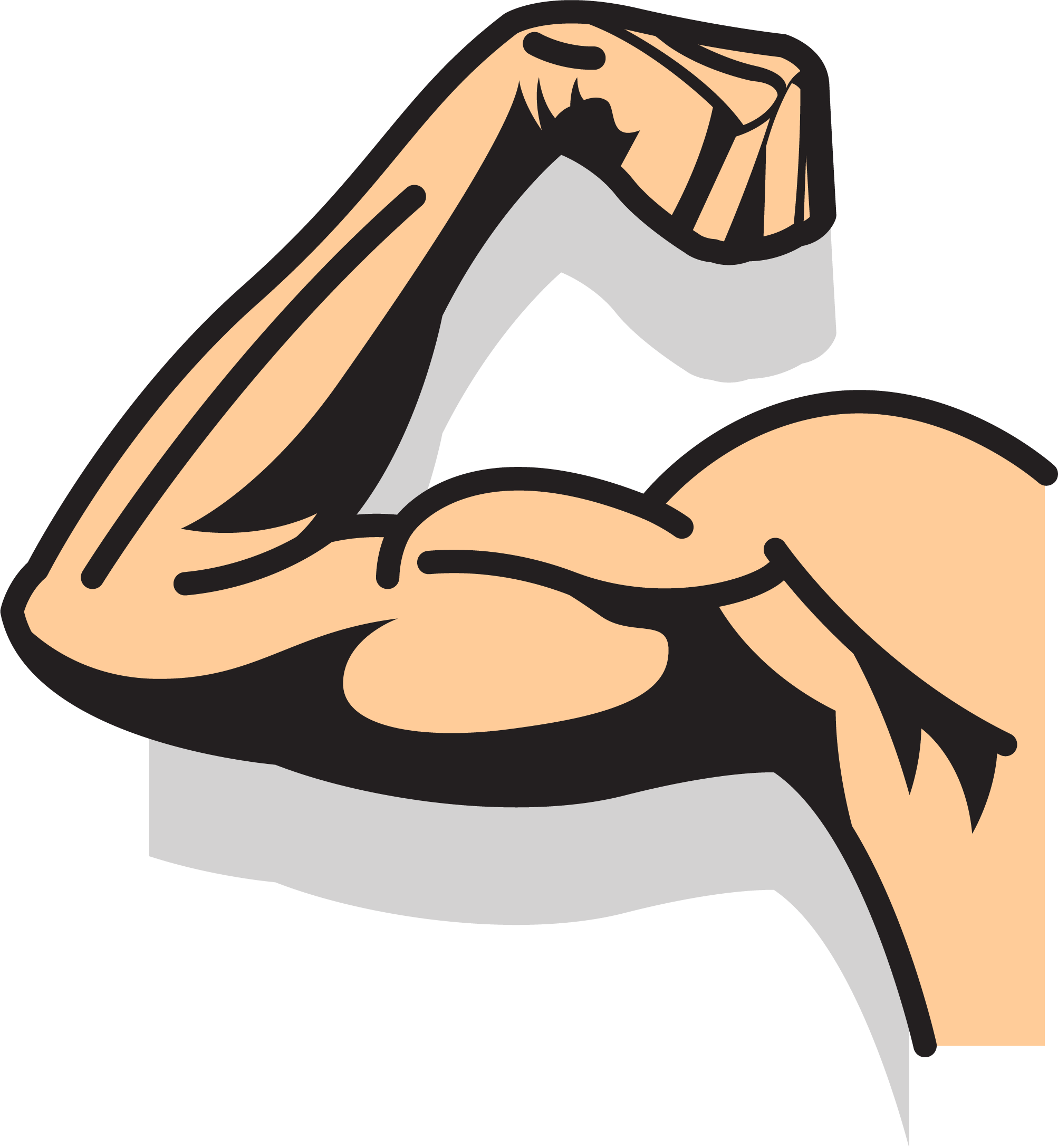 strength clipart strong muscle