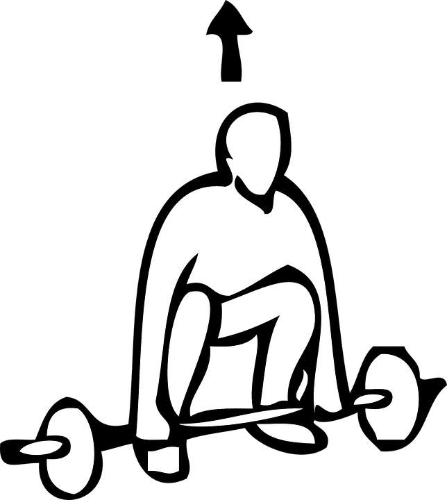 Muscle clipart weightlifting.