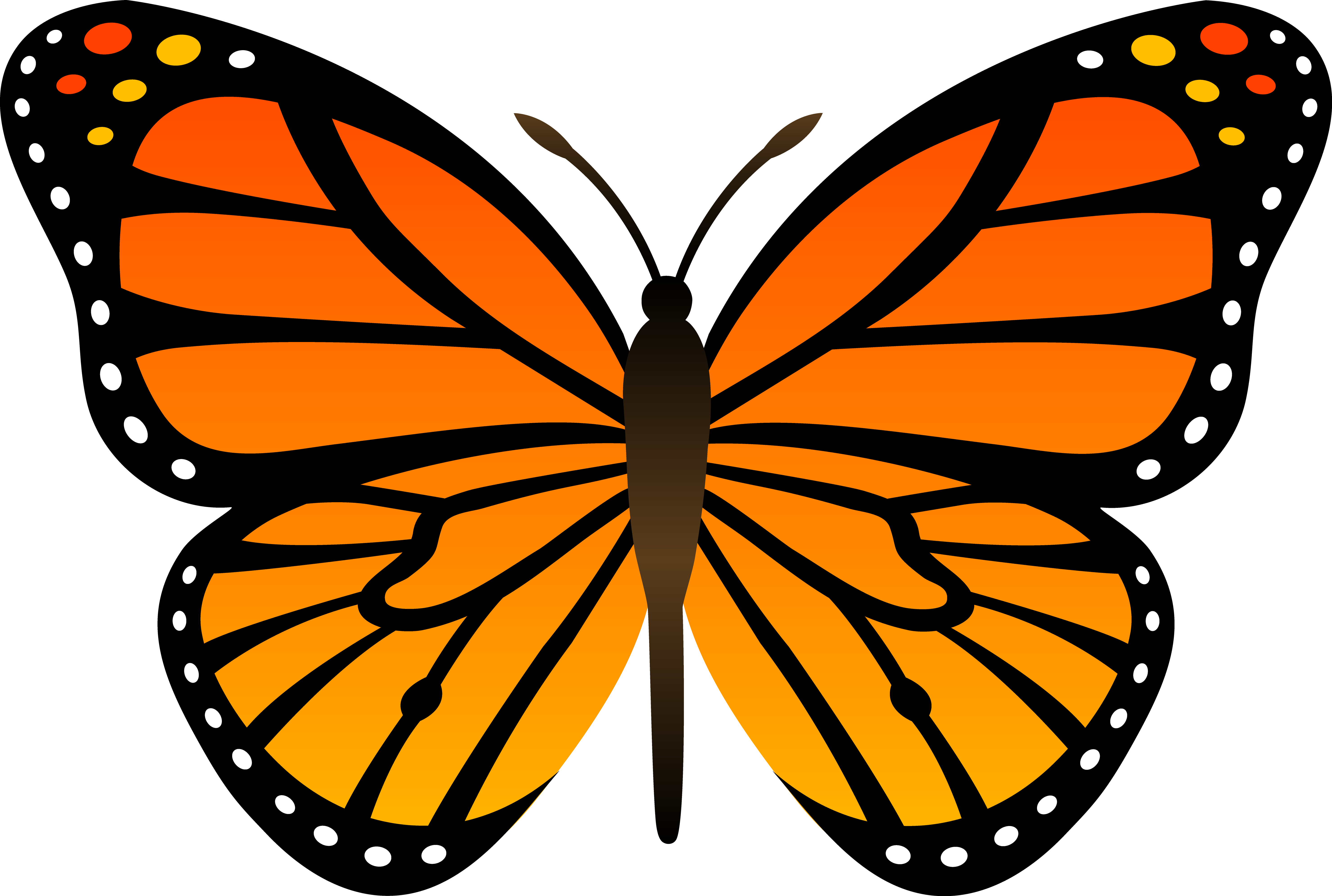 Clipart free images butterfly.