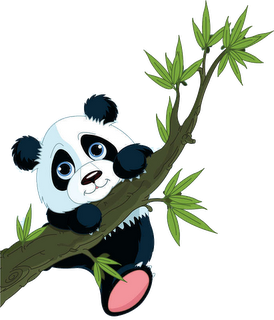 panda clipart cute cartoon