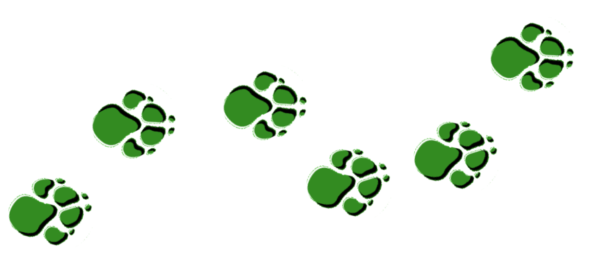 bear paw clipart green