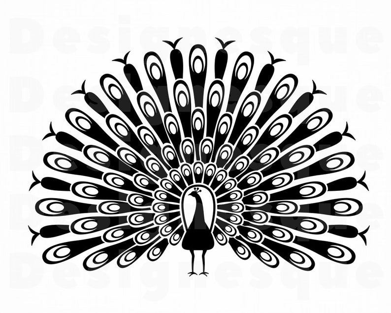 Peacock clipart silhouette.