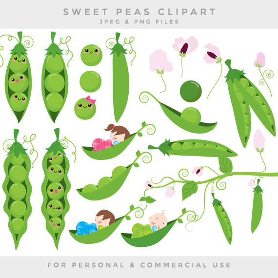 peas clipart drawing