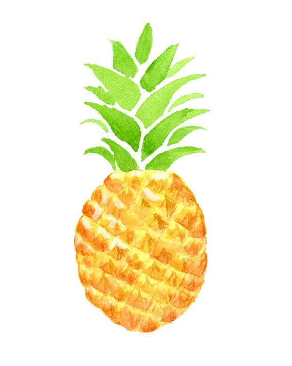 pineapple clipart watercolor