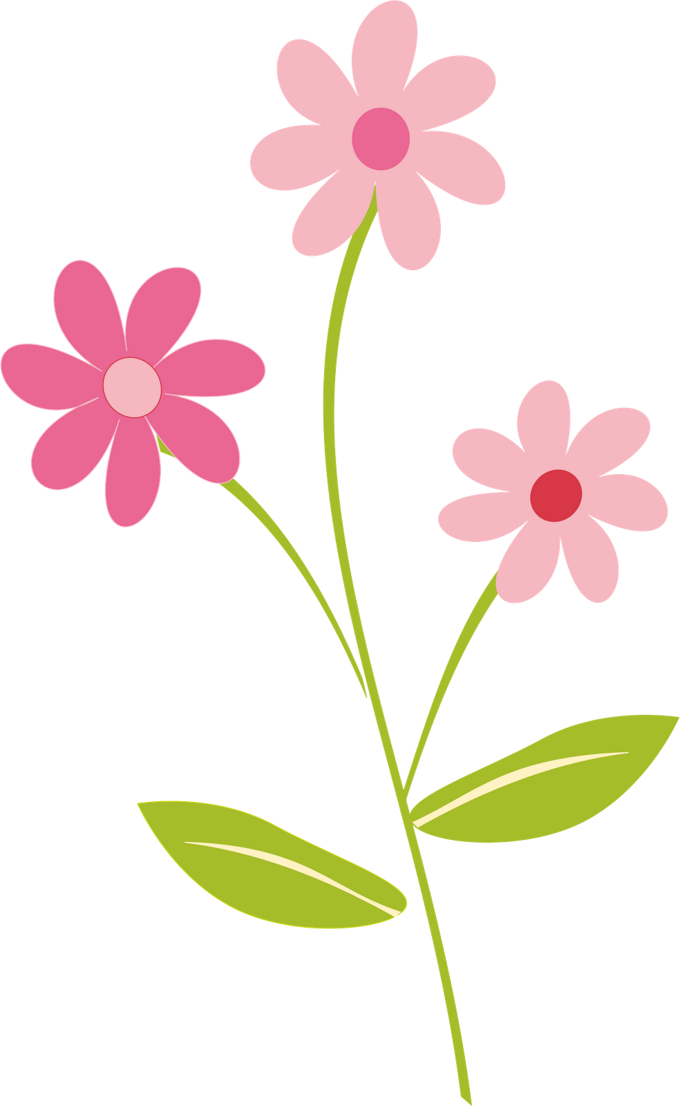 spring flower clipart colorful