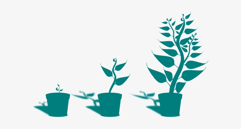 Plant clipart small.