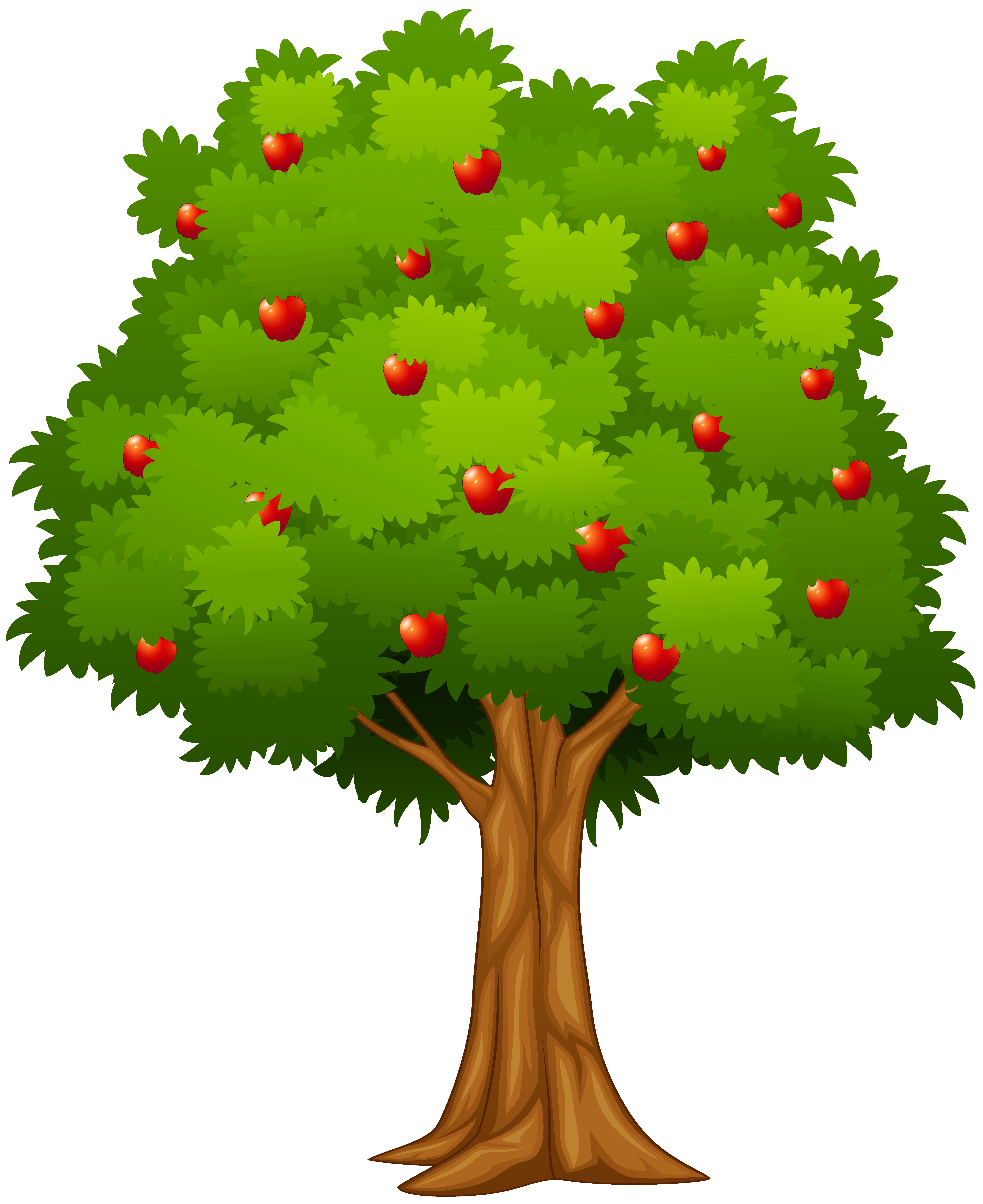 Plant clipart tree.