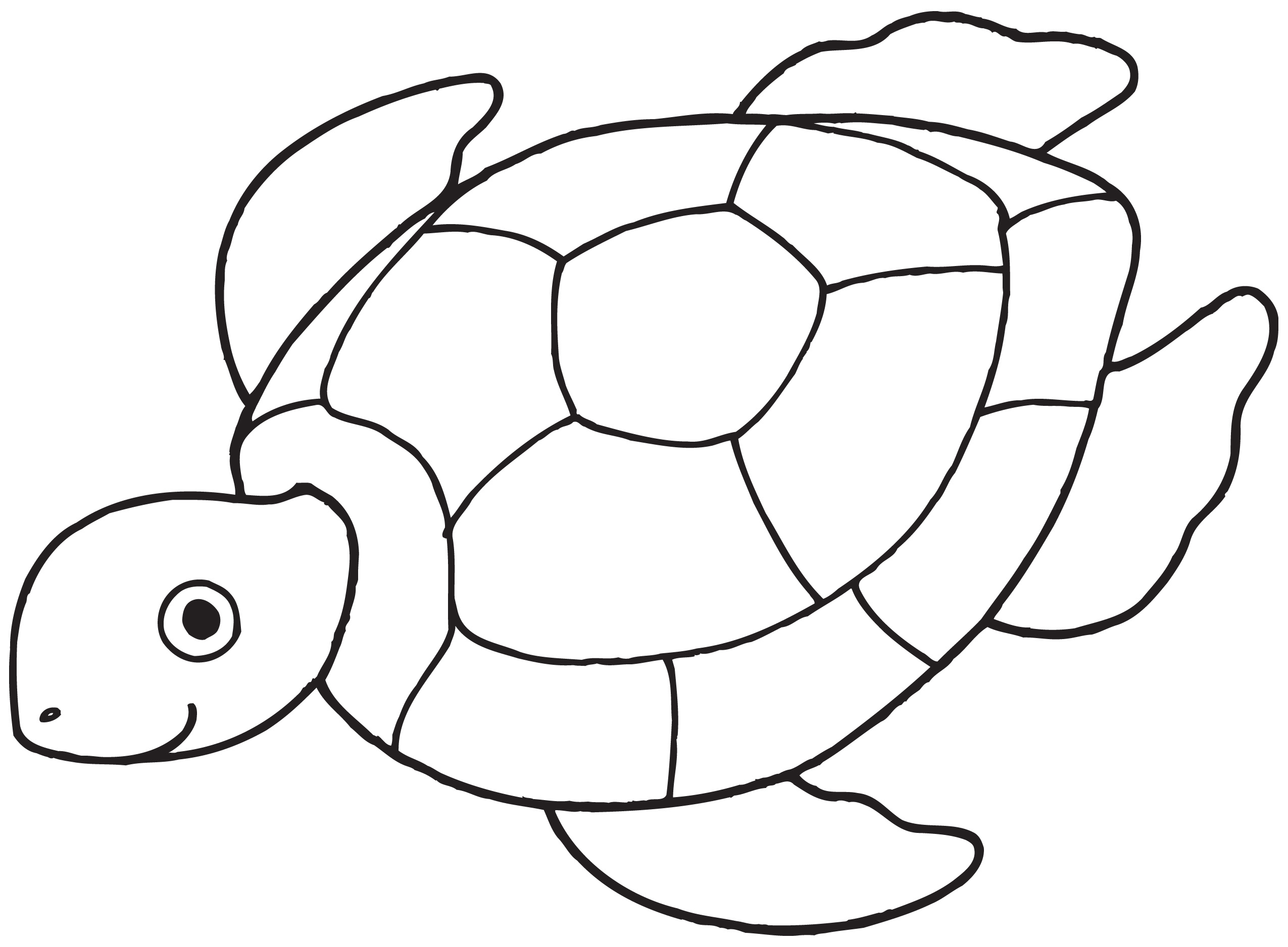 free black and white clipart turtle