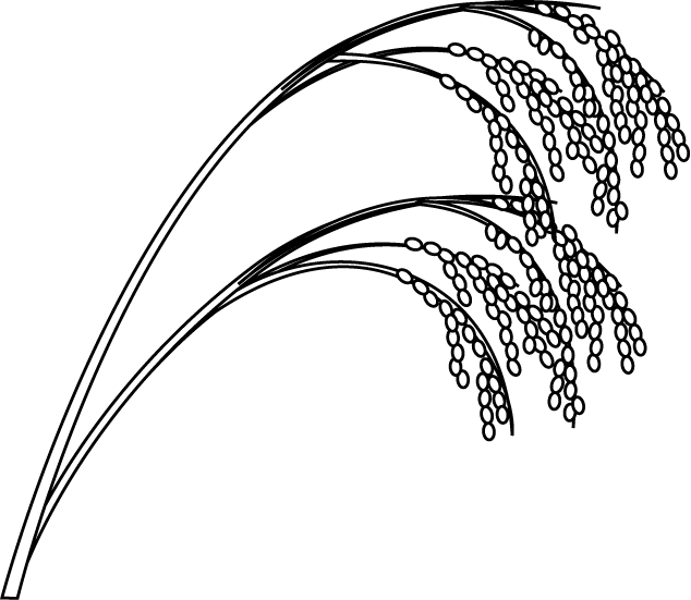 Seeds clipart rice seed.