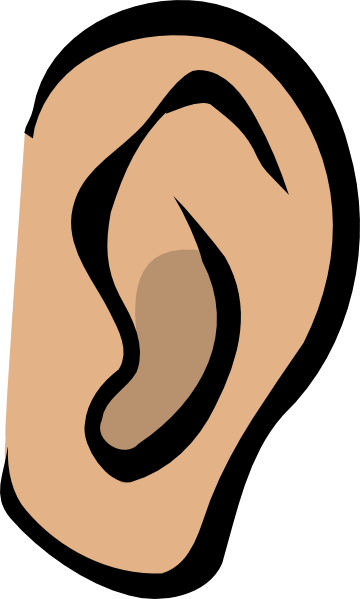 ear clipart right