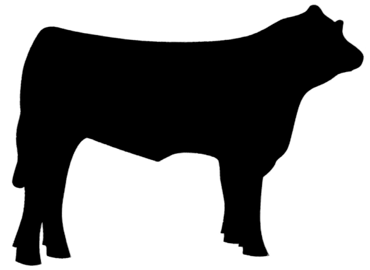 cow clipart beef
