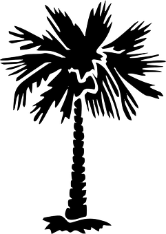 Shadow clipart palm tree.