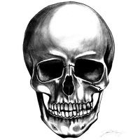 Skull clipart transparent background.