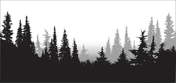 Skyline clipart forest.