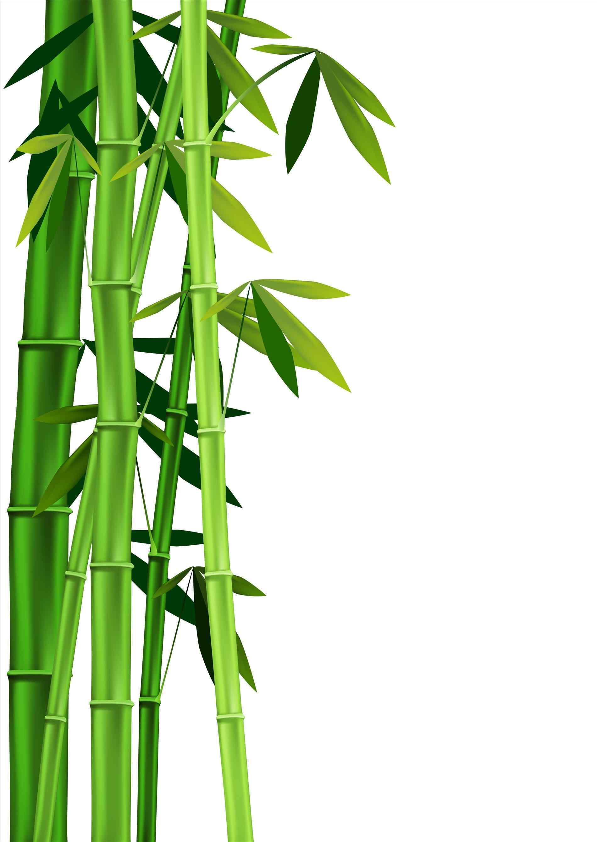 Stick clipart bamboo.