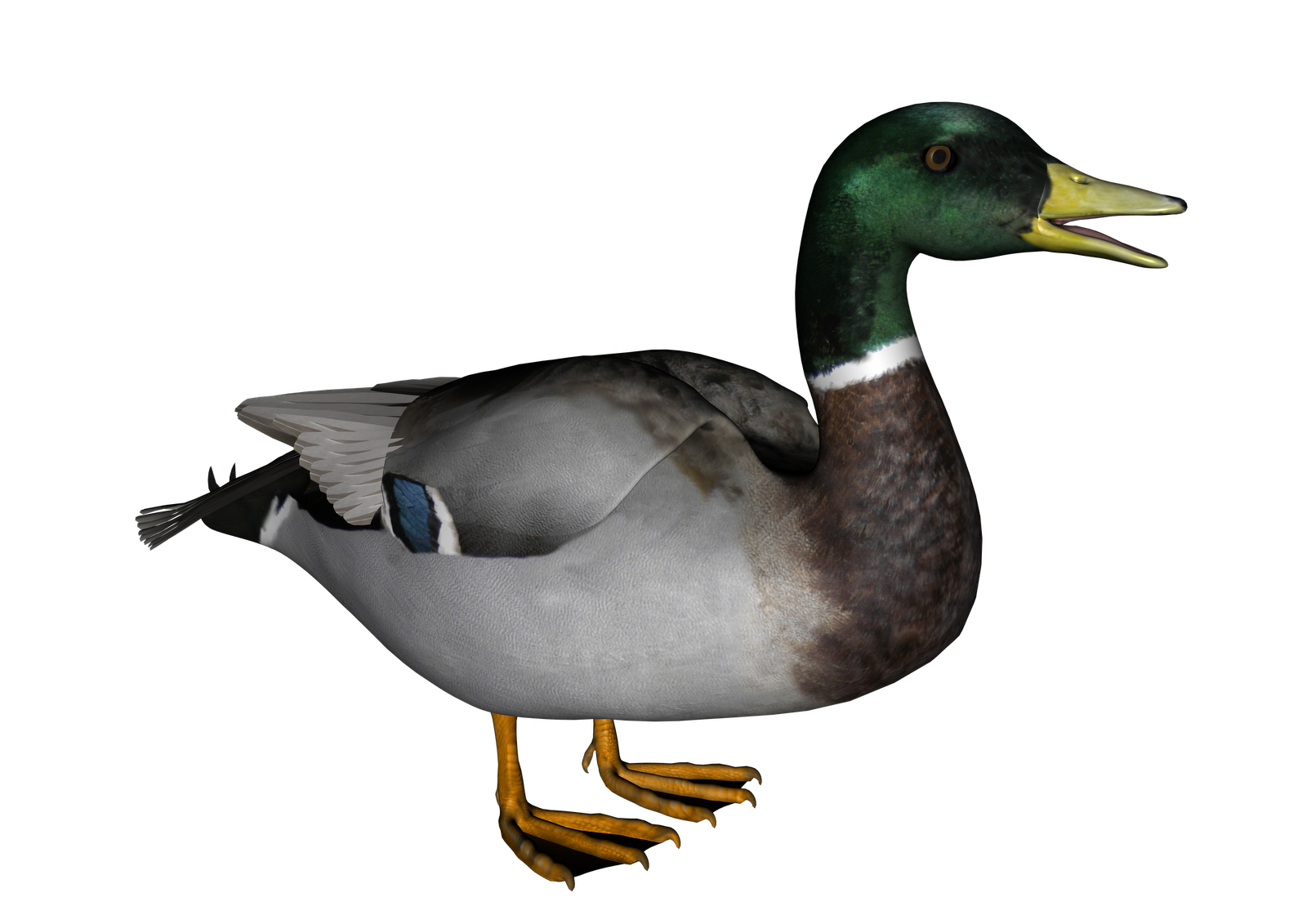 goose clipart clear background