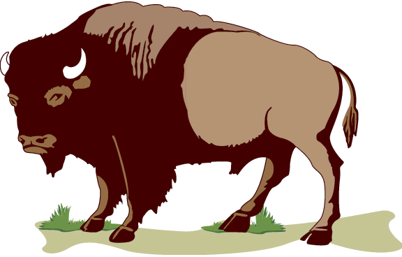 bison clipart american