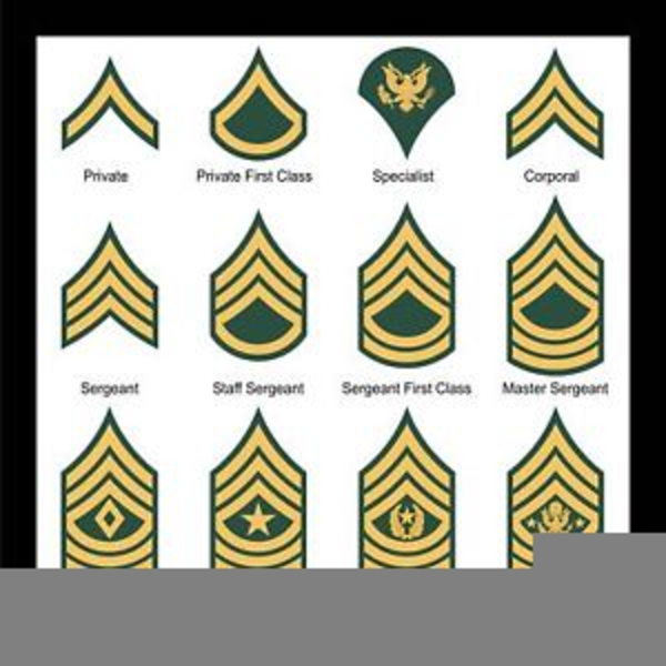 Us clipart army ranks.