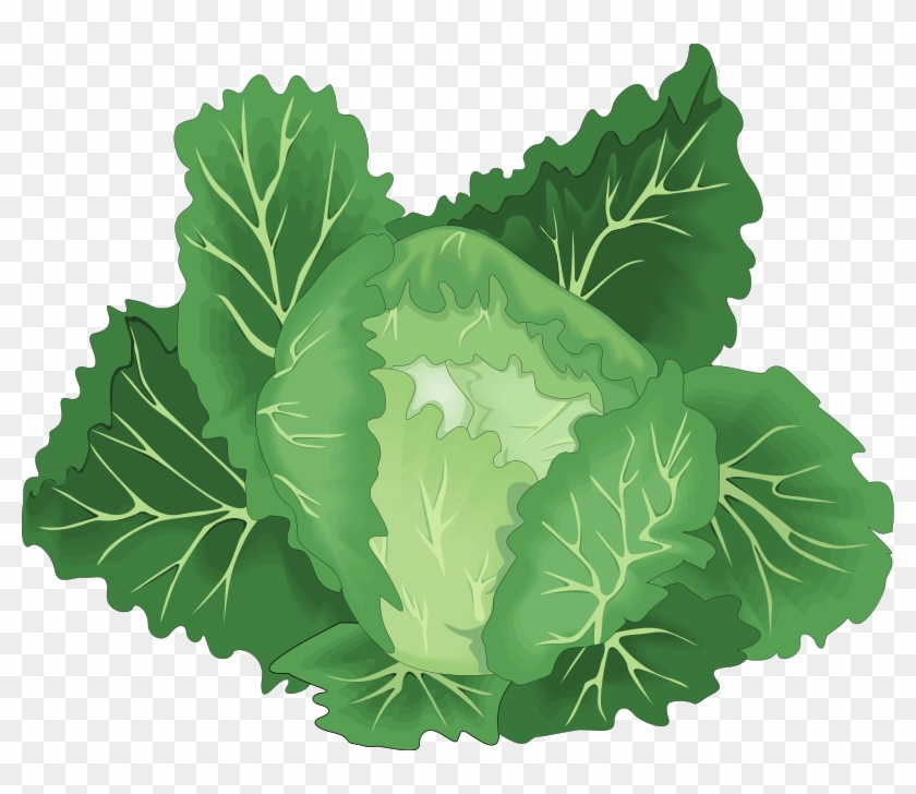 vegetables clipart leafy