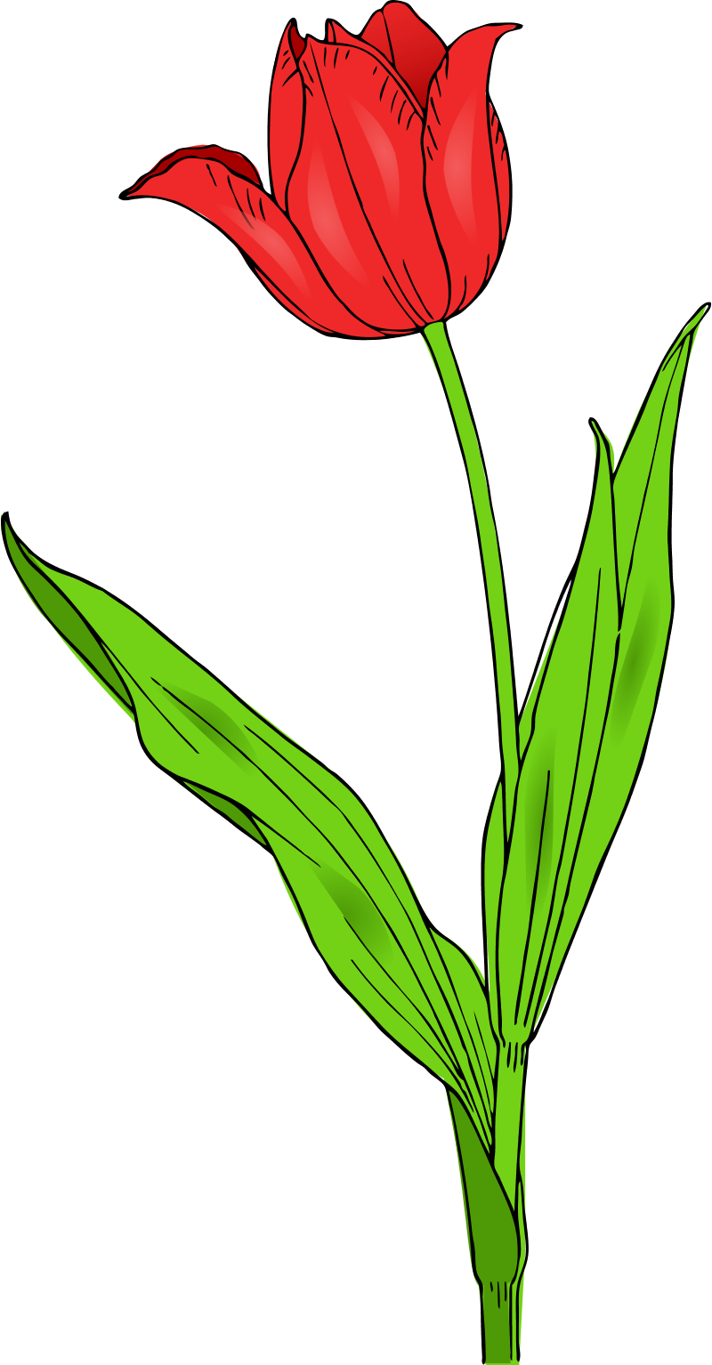 free clipart flowers printable