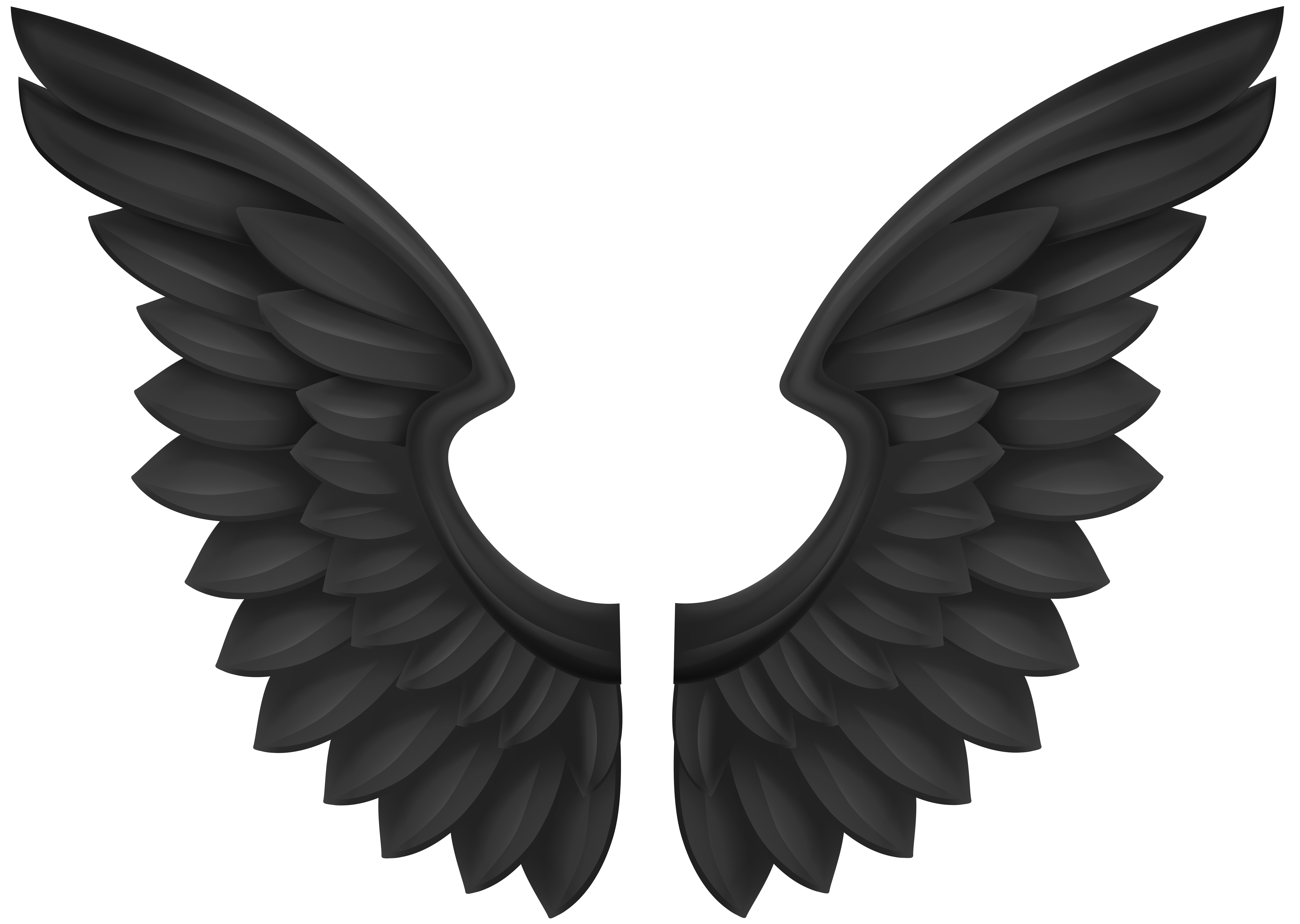 Wing clipart transparent.