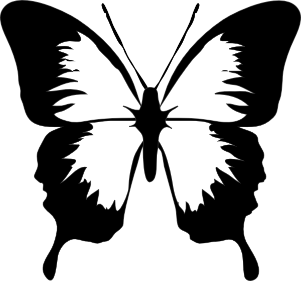 butterfly black and white clipart template