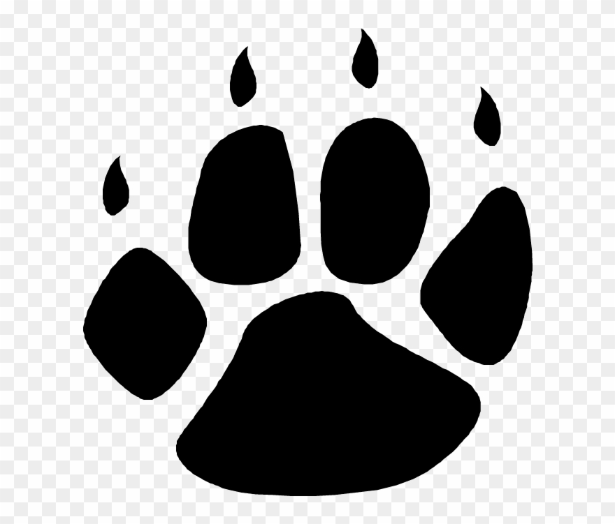 bear paw clipart transparent