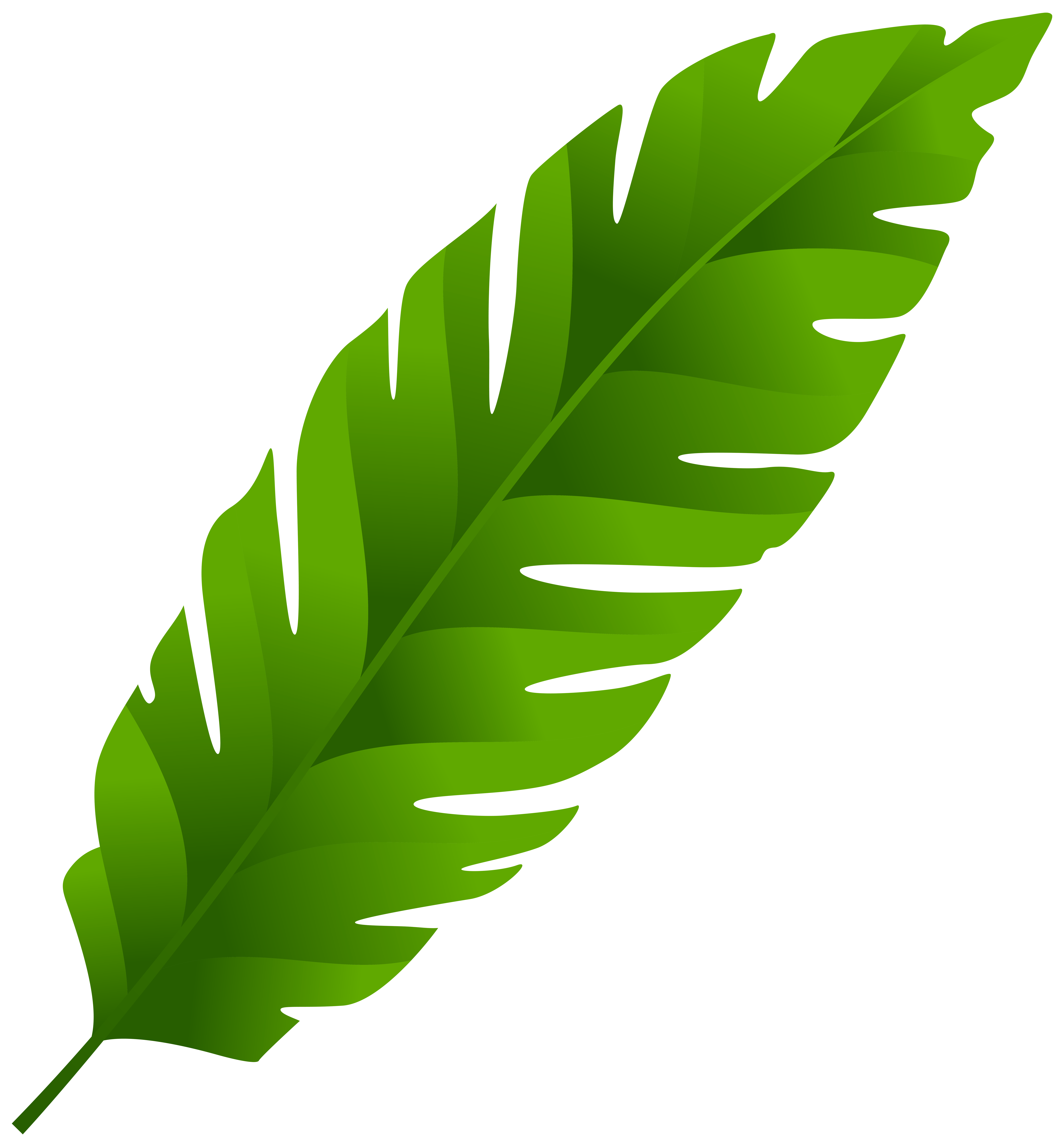 Jungle clipart leaves.