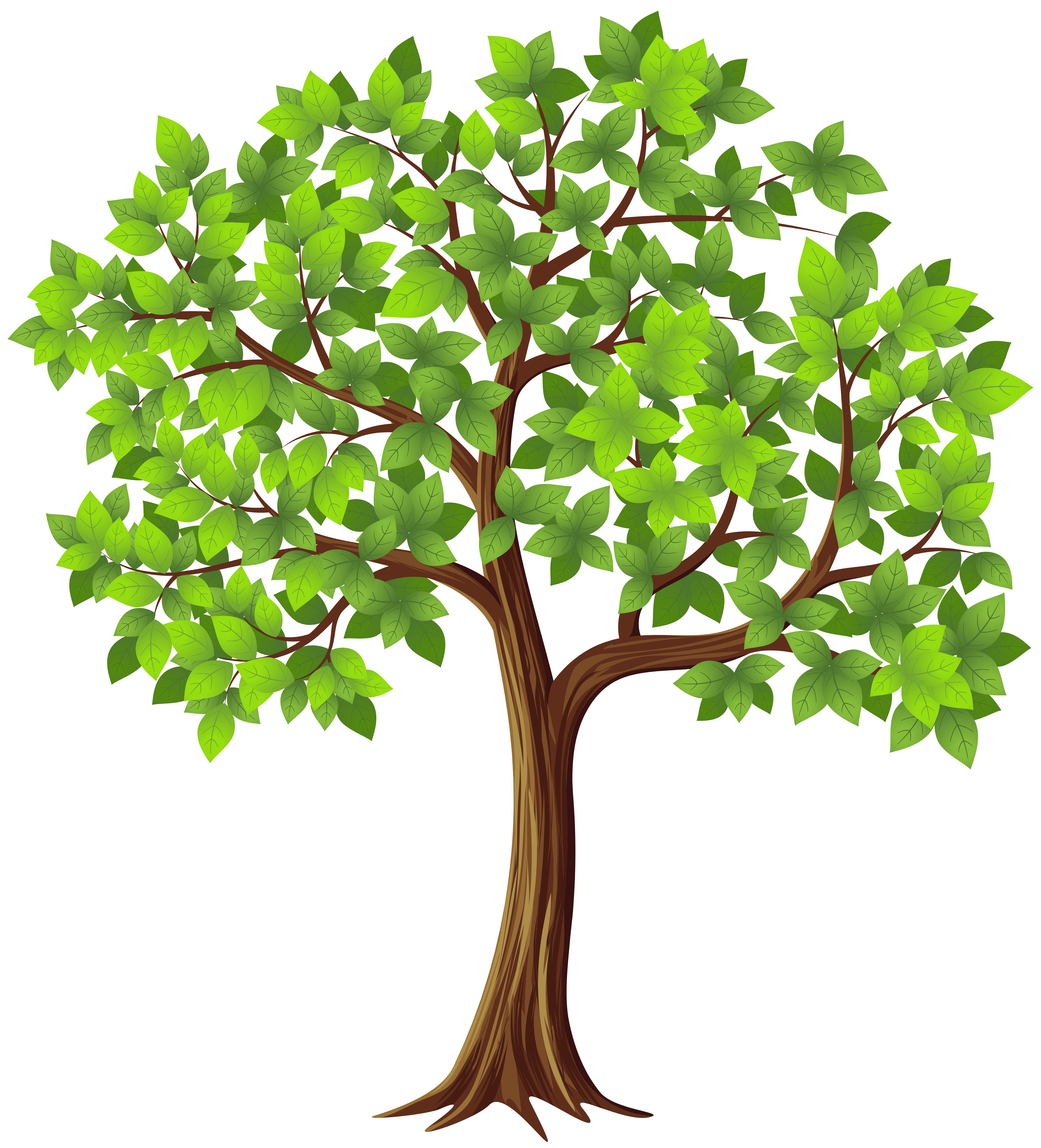 free tree clipart high resolution
