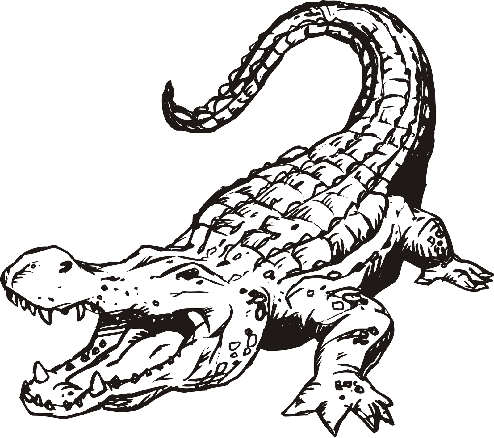 gator clipart angry