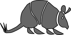 armadillo clipart animated
