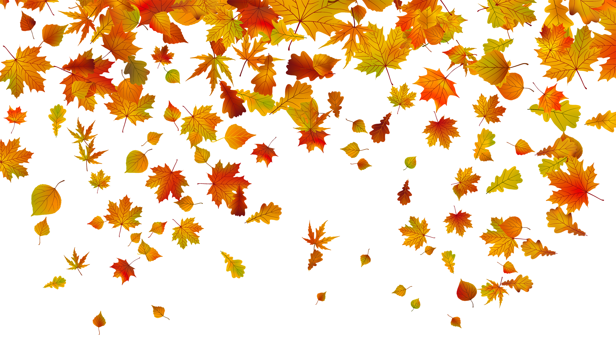 falling leaves clipart transparent