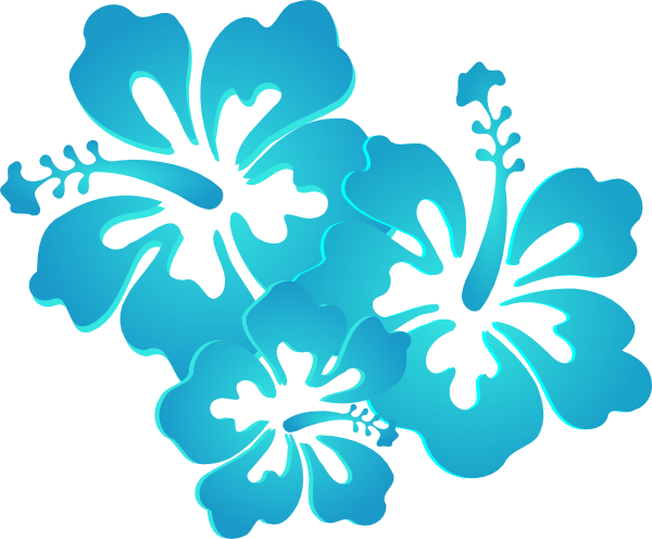 hibiscus clipart teal