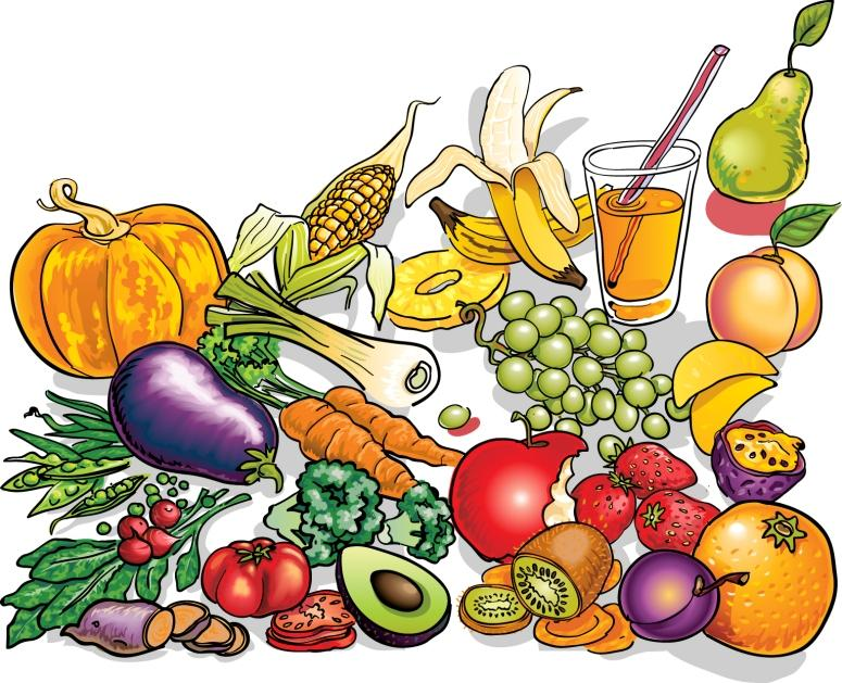 protein clipart nutritional foods