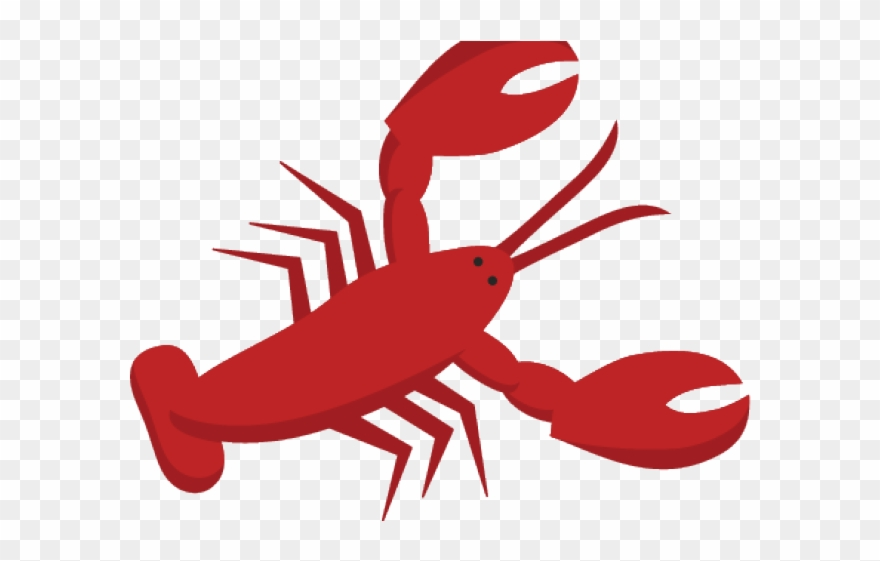 lobster clipart easy