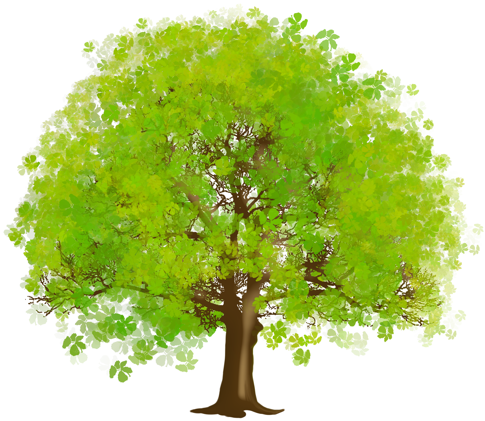 fall tree clipart large