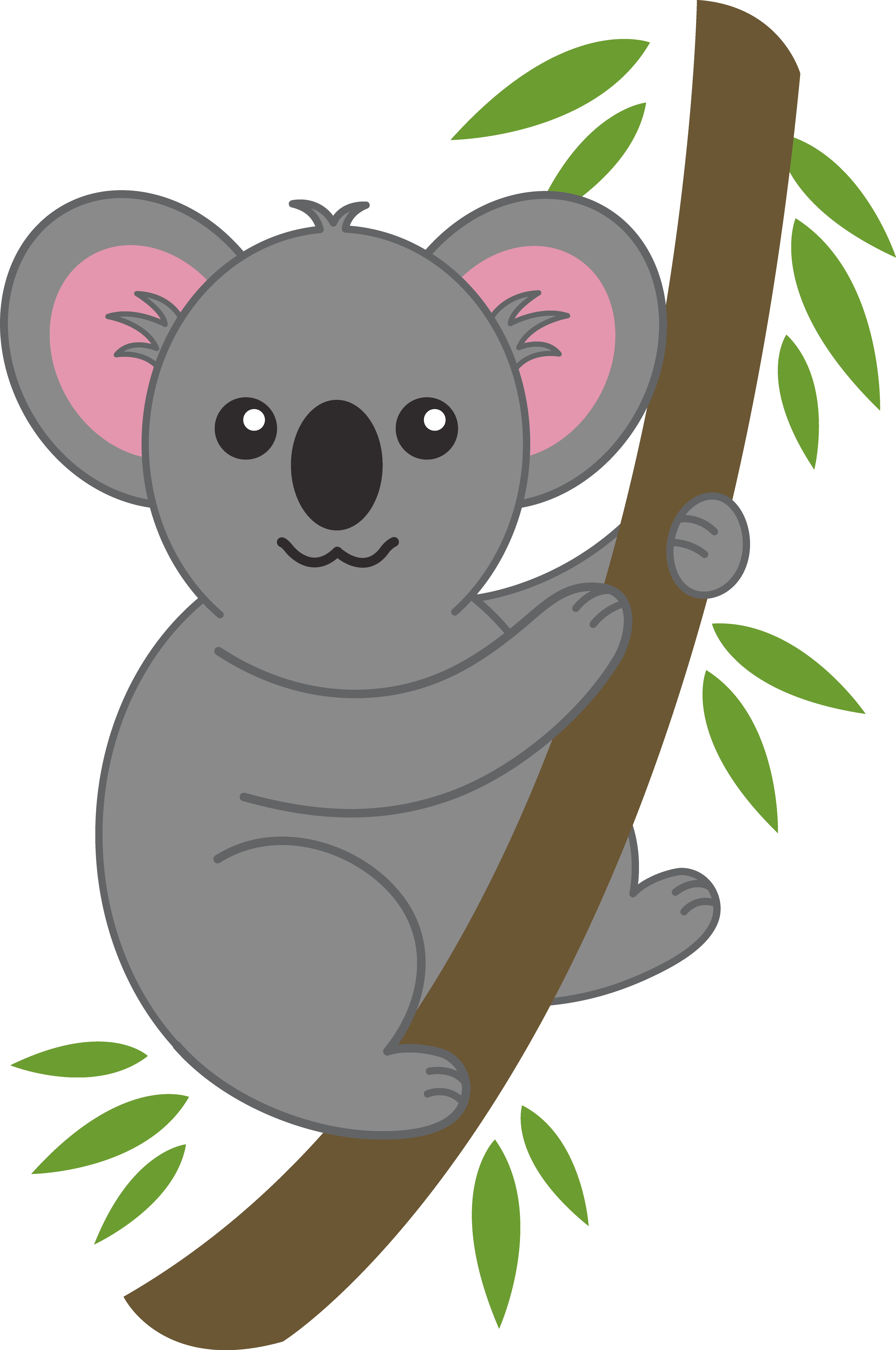 koala clipart transparent background
